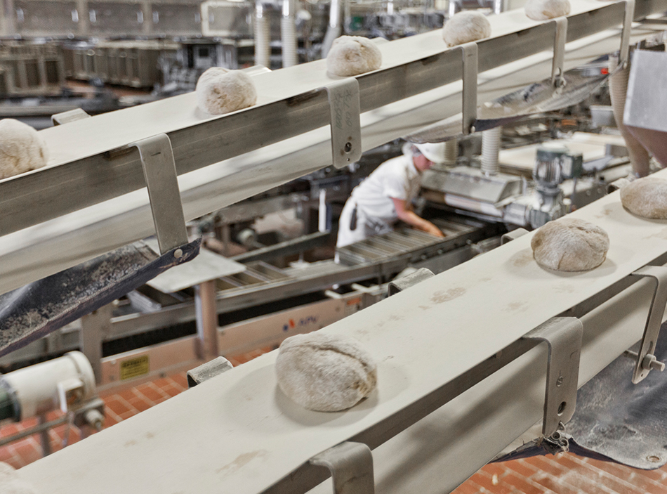 Gold Medal Bakery employees baking bread in the process plant