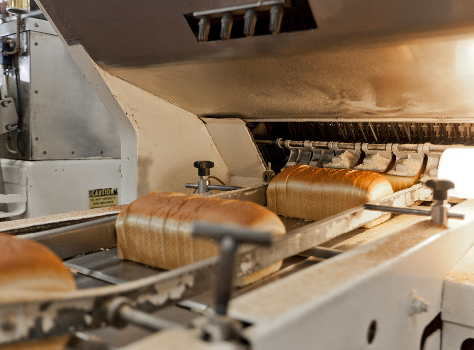 Gold Medal Bakery sliced bread during the baking process